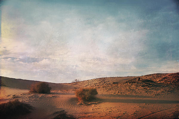 As The Sand Shifts So Do I Print by Laurie Search