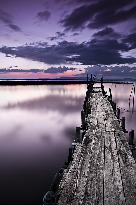 At The End Print by Jorge Maia