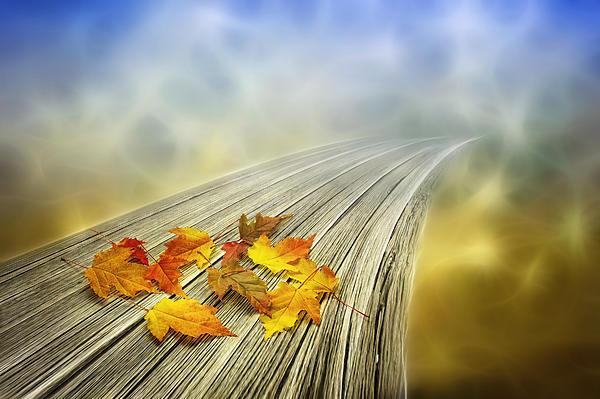 Autumn Bridge Print by Veikko Suikkanen