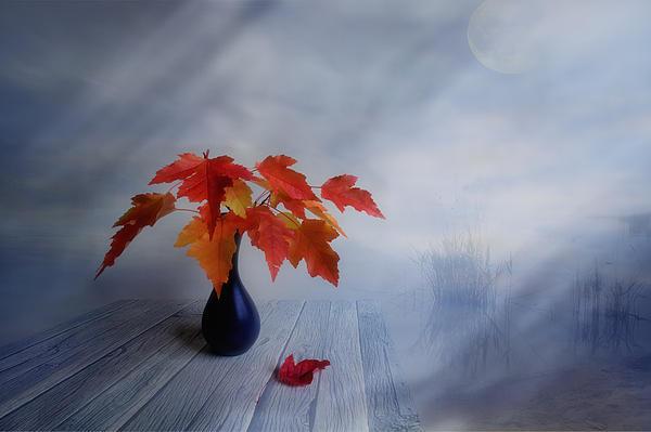 Autumn Colors Print by Veikko Suikkanen