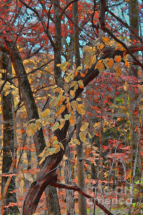 Autumn Day Print by Jeff Breiman