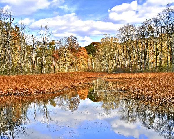 Autumn Fades Print by Frozen in Time Fine Art Photography