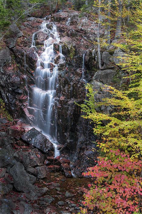 Autumn Falls Away Print by Jon Glaser