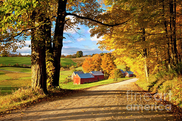 Brian Jannsen - Autumn Farm in Vermont