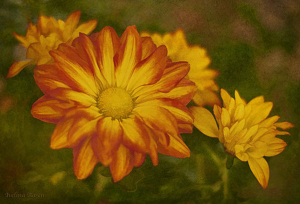 Autumn Flowers Print by Ivelina  Aasen