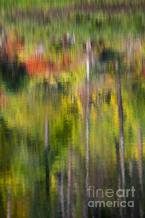 Autumn Impressions Print by Mike  Dawson