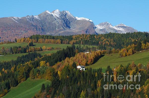 Autumn In Austria Print by Phil Banks