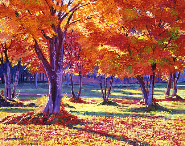 Autumn Leaves Print by David Lloyd Glover