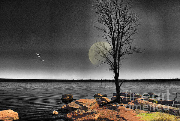 Autumn Moon Print by Betty LaRue