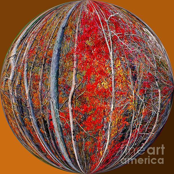 Autumn Reds Print by Scott Cameron