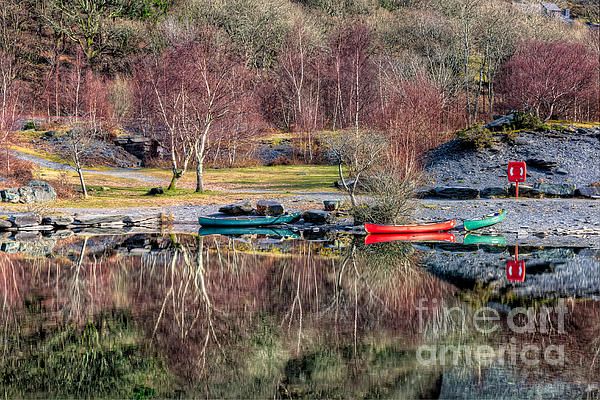 Autumn Reflections Print by Adrian Evans