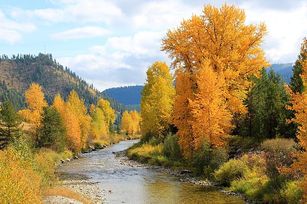 Autumn River Print by Athena Mckinzie