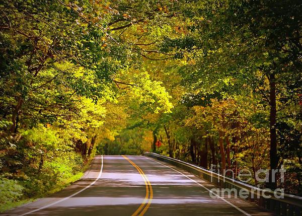 Autumn Road Print by Carol Groenen