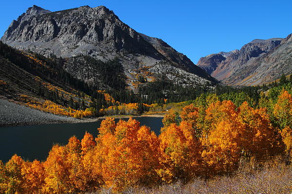 Jetson Nguyen - Autumn splendor at Lundy Lake in the Eastern Sierras