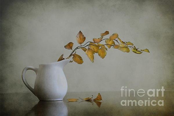Autumn Still Life Print by Diana Kraleva