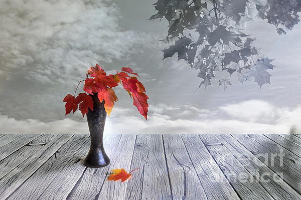 Veikko Suikkanen - Autumn still life
