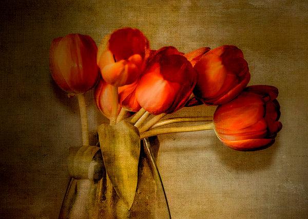 Autumn Tulips Print by Julie Palencia