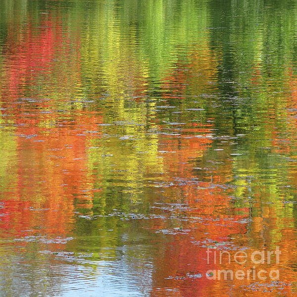 Ann Horn - Autumn Water Colors