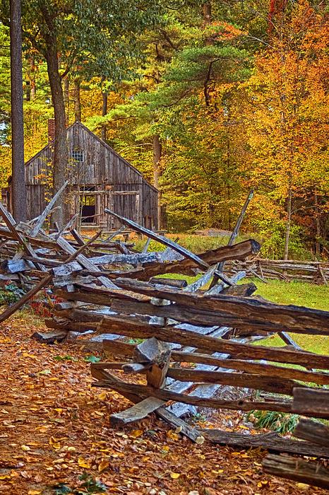 Autumn Wooden Fence Print by Joann Vitali