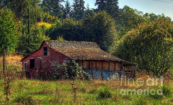 Autumnal Hdr Print by Chris Anderson