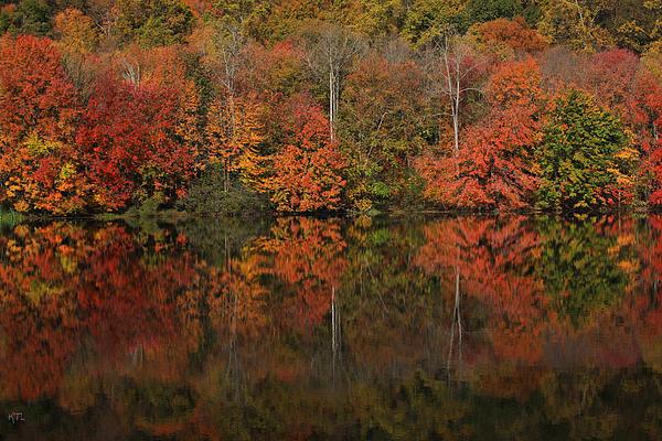 Autumns Design Print by Karol  Livote