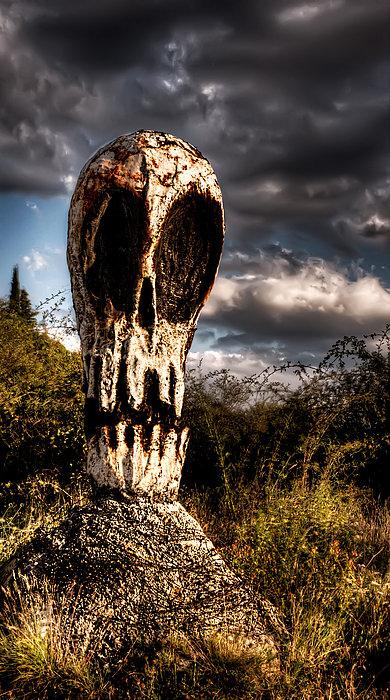 Weston Westmoreland - Awaken Skull in the Twilight 3