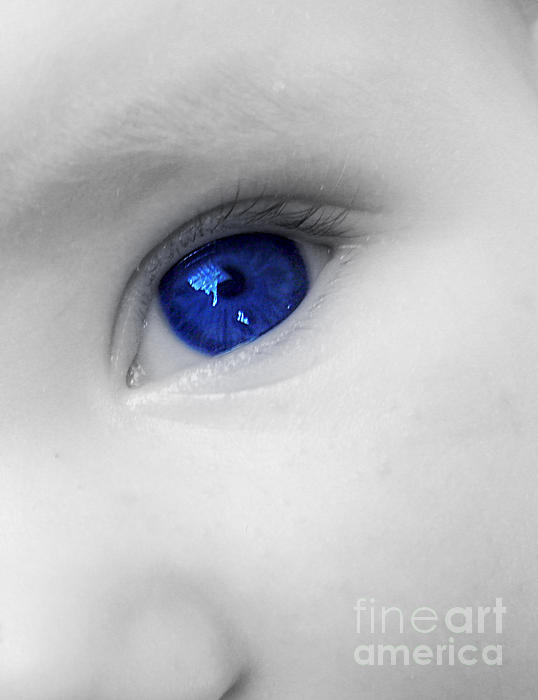 Baby Blue Print by Nina Ficur Feenan