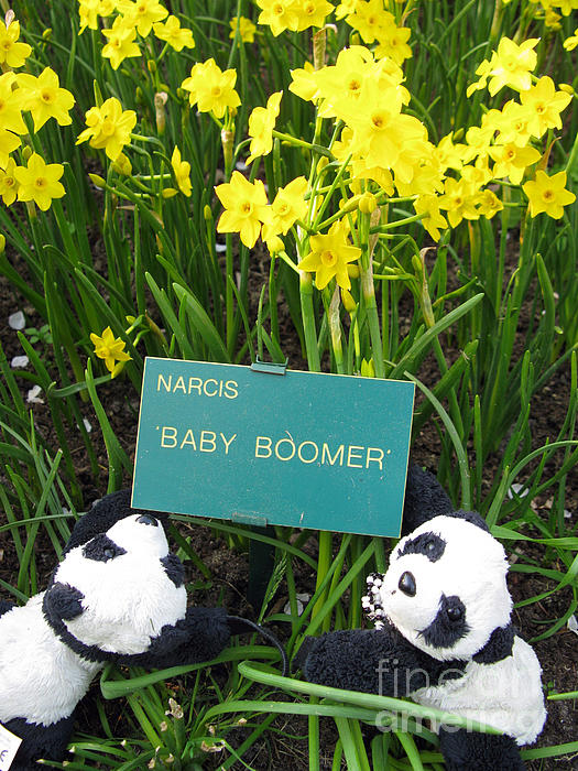 Baby Boomers Print by Ausra Paulauskaite
