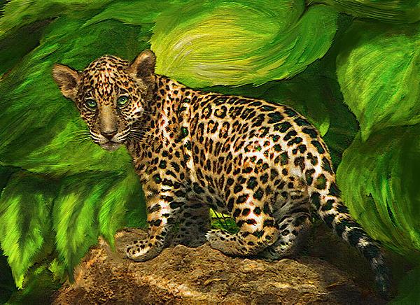 Baby Jaguar Print by Jane Schnetlage