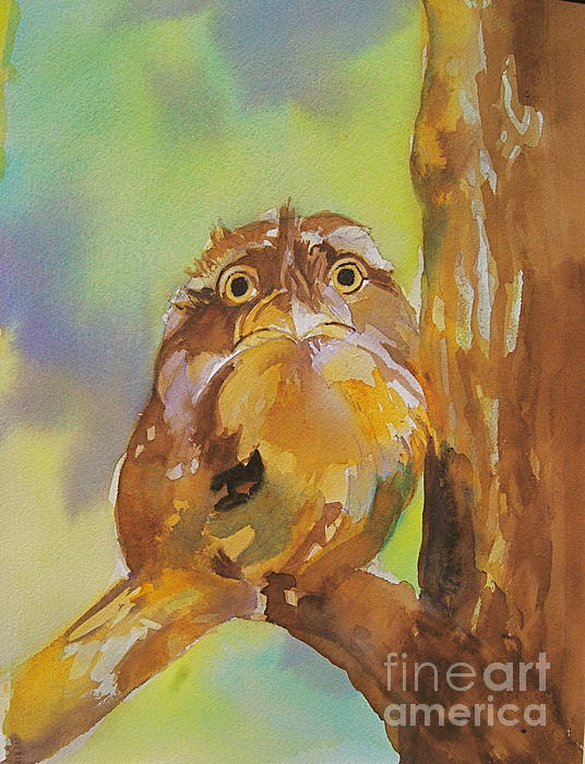 Baby Owl Print by Reveille Kennedy