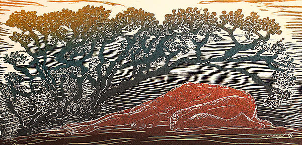 Bajo La Sombra Print by Maria Arango