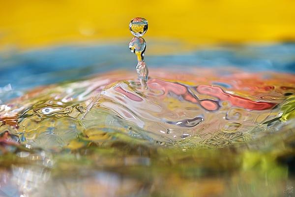Balancing Act Print by Lisa Knechtel