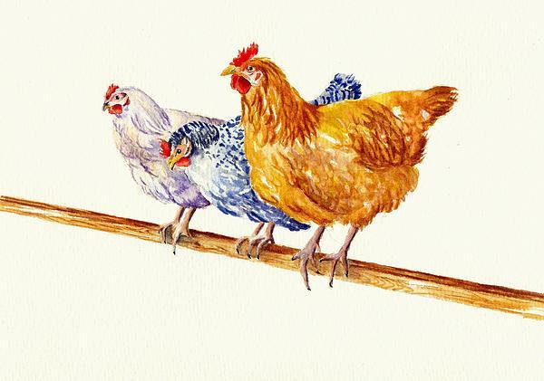 Debra Hall - Balancing Chickens