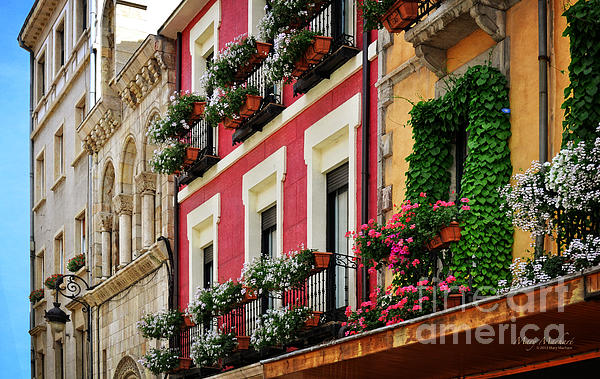 Balconies Of Leon Print by Mary Machare