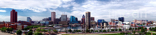 Baltimore Skyline Print by Olivier Le Queinec