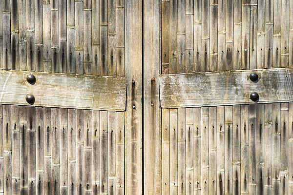 Bamboo Gates Print by Alexander Senin