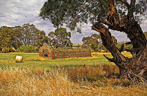Barn And Bale In Hindmarsh Vale Print by Tony Crehan