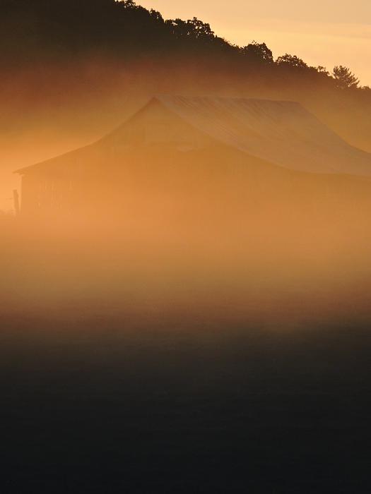 Jamie K Reaser - Barn in Golden Mist