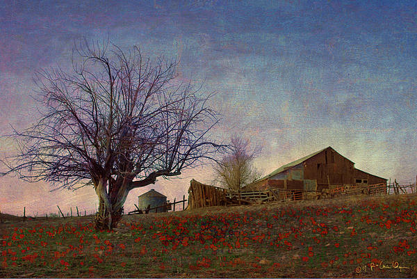 Barn On The Hill - Big Sky Print by R christopher Vest