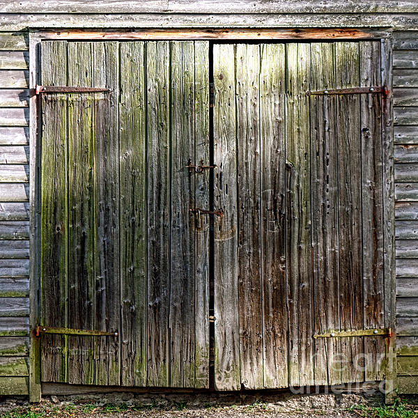 Barndoors Print by Olivier Le Queinec