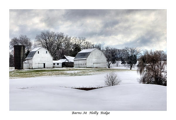 Barns At Holly Ridge Print by Terry Spencer