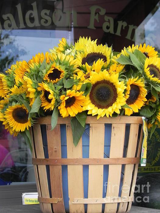 Chrisann Ellis - Basket of Sunshine