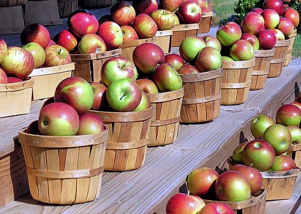 Baskets Of Apples Print by Janice Drew