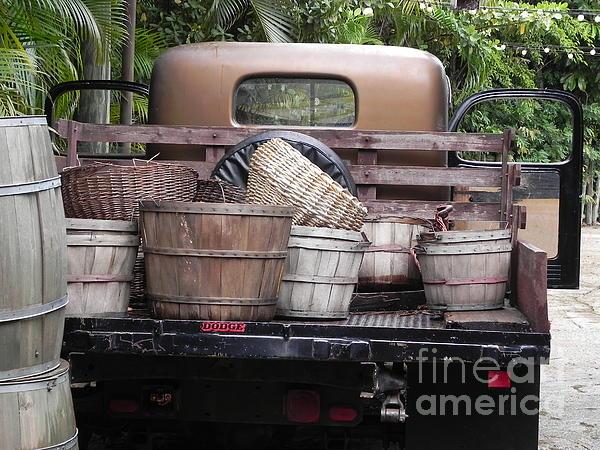 Baskets Of Feed Print by Chrisann Ellis