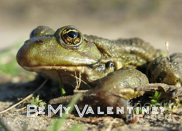 Be My Valentine Print by Ausra Paulauskaite