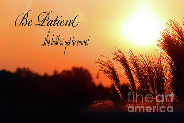 Be Patient Print by Cathy  Beharriell