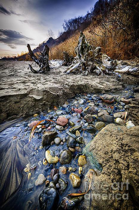 Beach Brook At Scarborough Bluffs Print by Elena Elisseeva