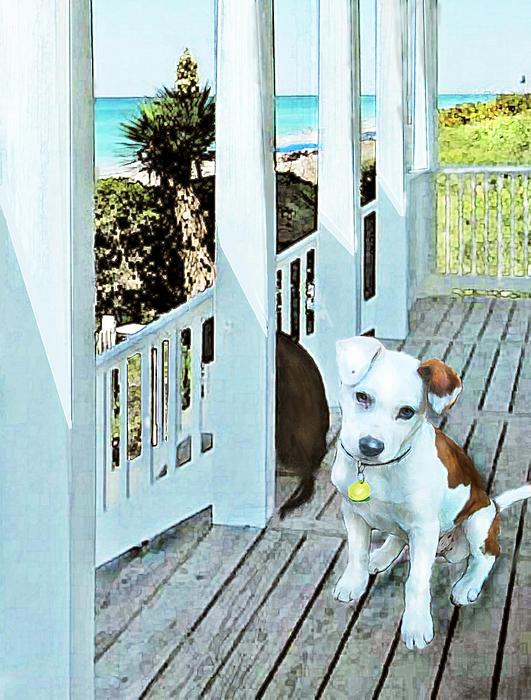 Beach Dog 1 Print by Jane Schnetlage