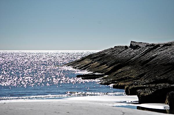 Beach Jetty Print by John Collins