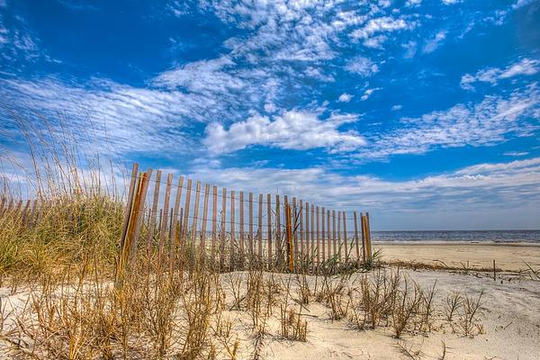 Beach Under Blue Skies Print by Debra and Dave Vanderlaan